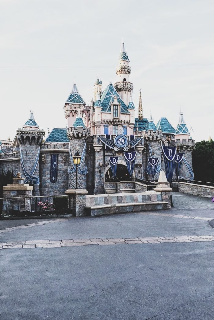 Disneyland Castle unobstructed view