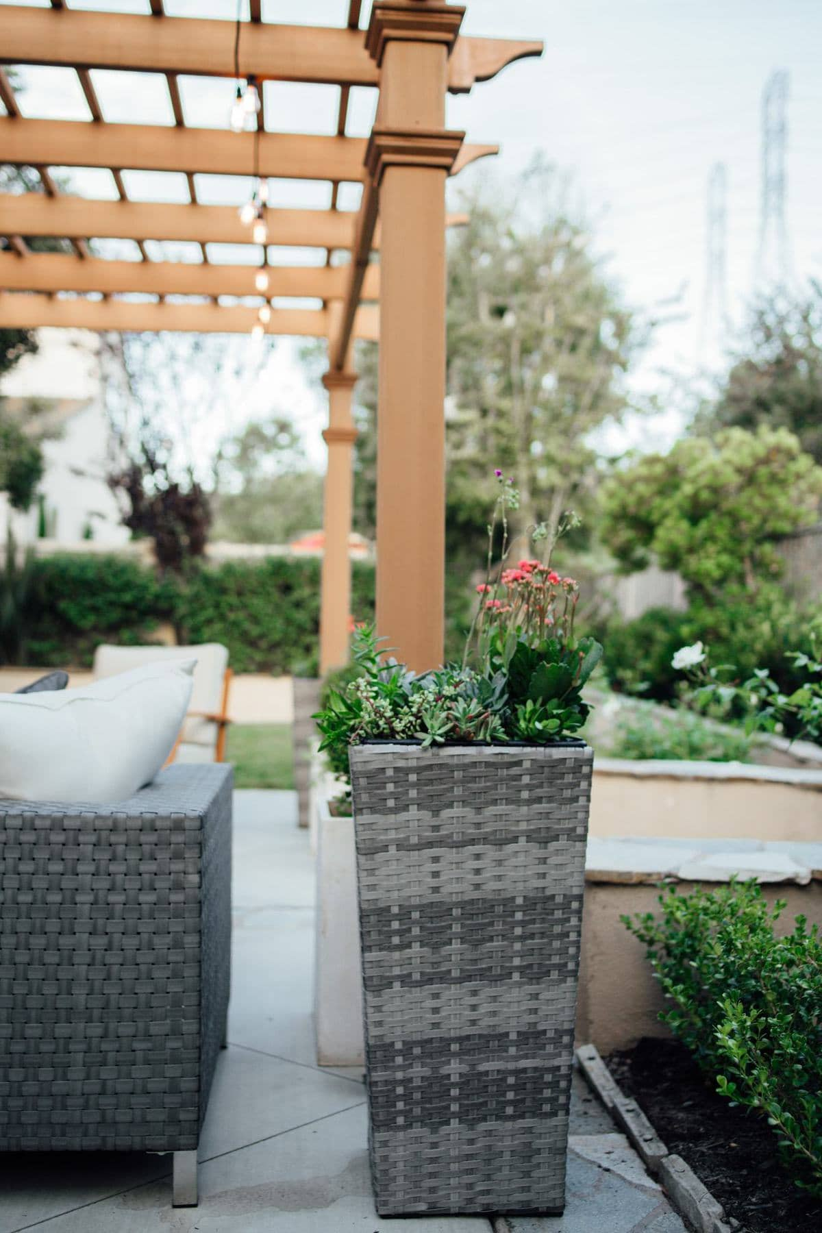 tall wicker planter for backyard