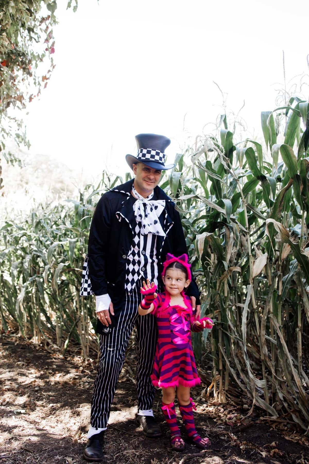 halloween mad hatter costume
