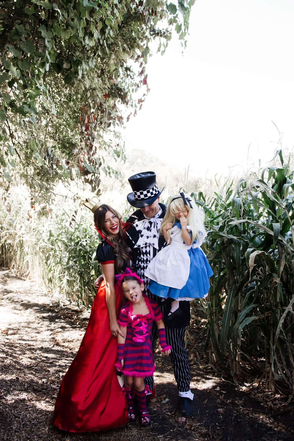 halloween alice in wonderland family costume