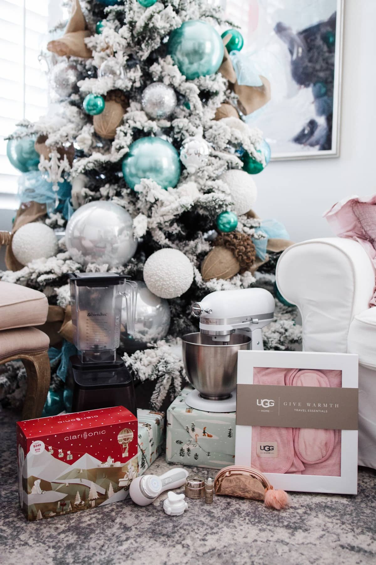 what to give your assistant for christmas christmas gift blendtec - What To Give For Christmas