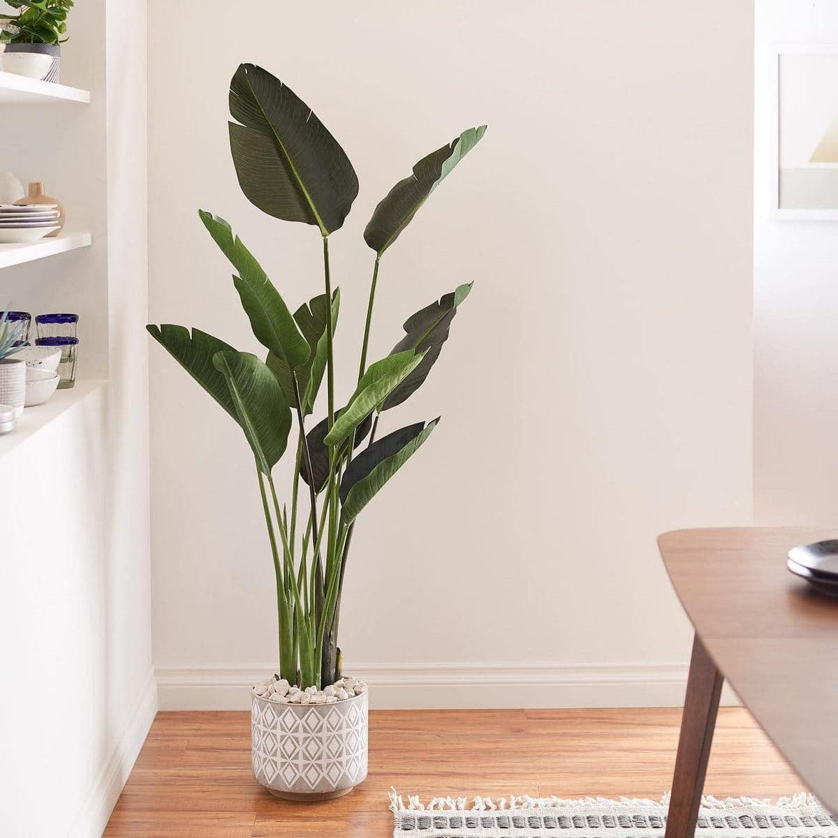 fake plant amazon