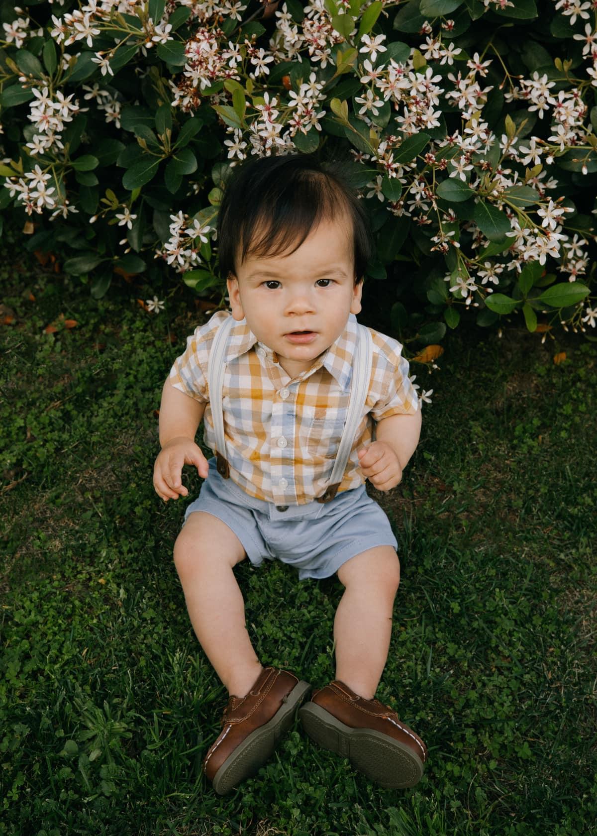 baby boy suspenders set carter's